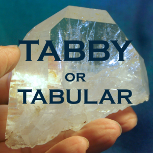 Tabby or Tabular Blog Post Image