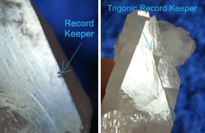 Trigonic-Record-Keeper-vs-regular-Record-Keeper