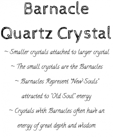 barnacle quartz crystal